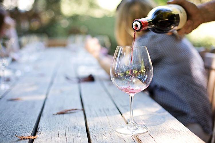 catar vinos tinto_opt