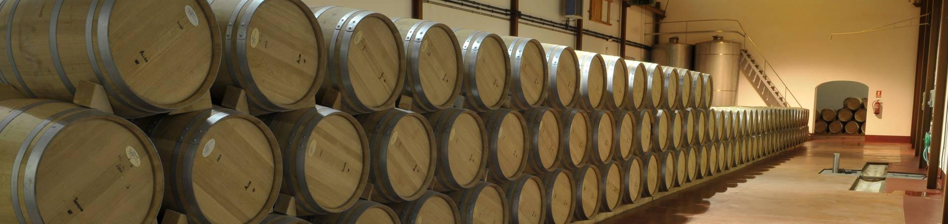 Crianza y envejecimiento del vino
