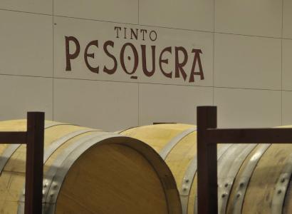 Vino mas vendido España