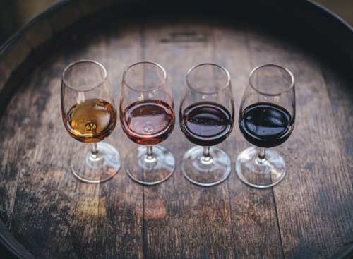 Copas de diferentes tipos de vinos